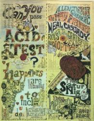 Can You Pass the Acid Test? poster