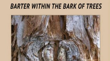 Erin Messer on Latif Harris' Barter Within the Bark of Trees