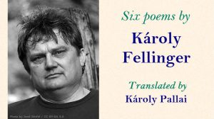Six Poems by Károly Fellinger, translated by Károly Sándor Pallai