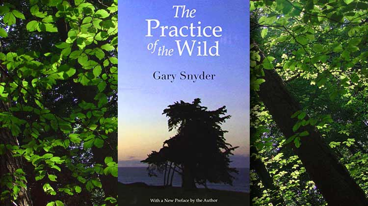 gary snyders concept of the wild in the practice of the wild Whole earth films present the practice of the wild: a conversation with gary snyder and jim harrision.