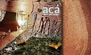 Aca - Viggo Mortensen and Friends