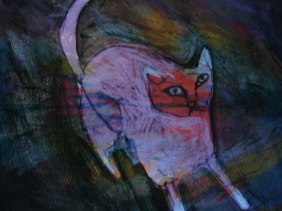 cat is awakened by northern lights in marfa texas - jill emery