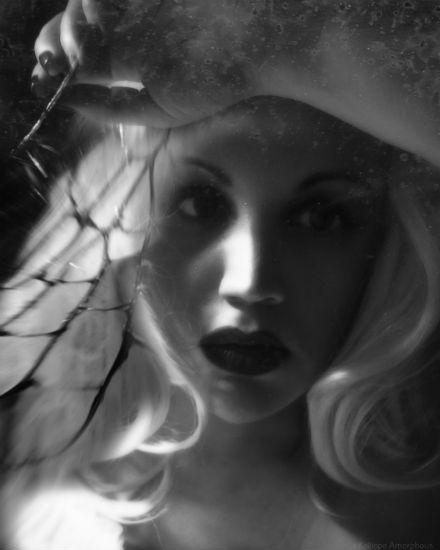 Dietrich's Mirror 17 - Kalliope Amorphous