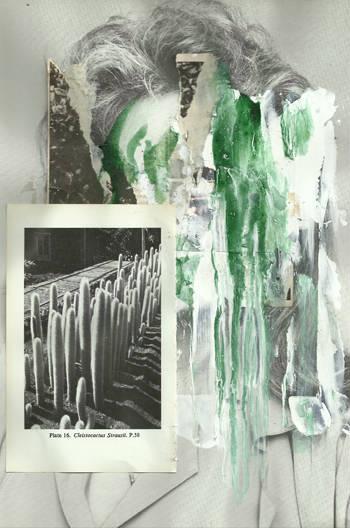 cargoph7  - Nicholas Lockyer
