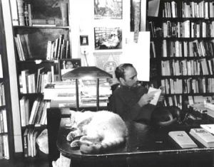 House Cat, Abandoned Planet Bookstore, San Francisco, 2000