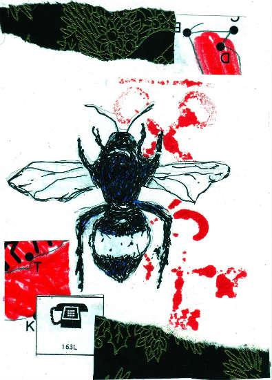 Bee Timmy - Jeffrey Cyphers Wright