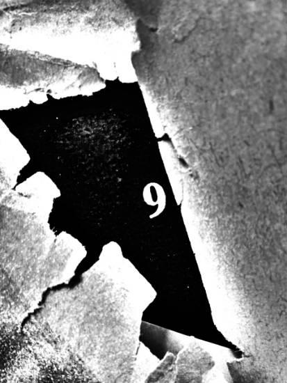 oblivion 2 - visual poetry by hiromi suzuki