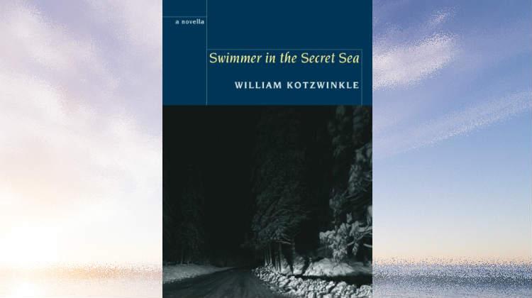 Swimmer in the Secret Sea - William Kotzwinkle