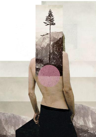 Tree - Rhed Fawell