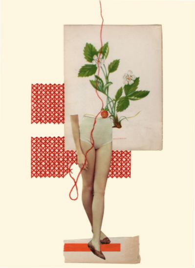 Strawberry - Rhed Fawell