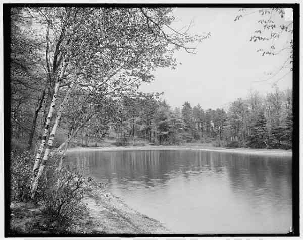 Thoreau's Cove at Walden Pond, 1910. Library of Congress