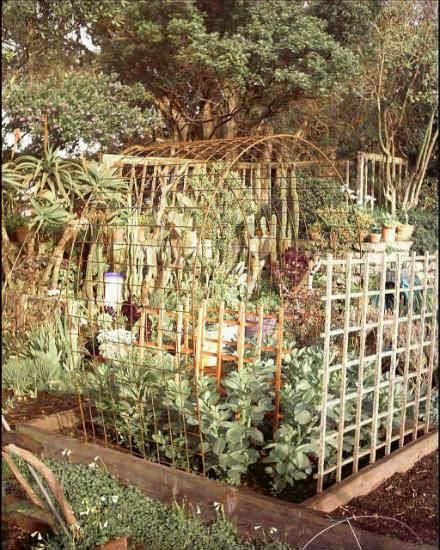 zzz sacred garden (2010) by Tisa Walden.