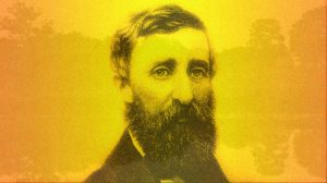 Mr. Henry David Thoreau