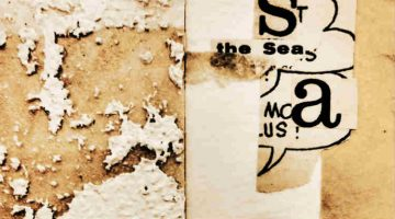 The seasons: visual poetry by hiromi suzuki