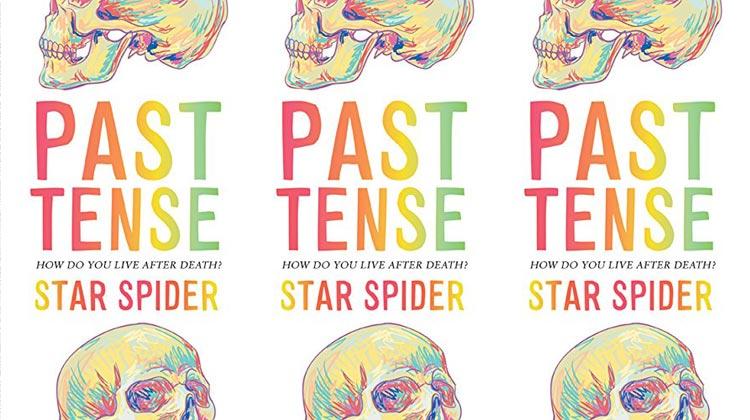Past Tense - YA novel by Star Spider