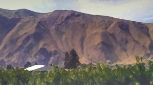the summer hills / credit: d. enck