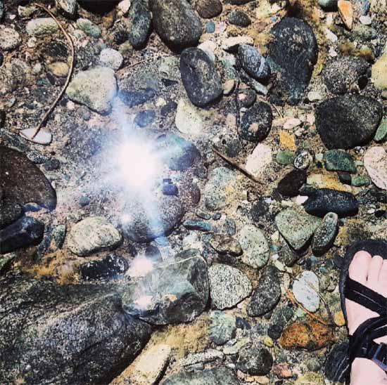 Pilgrimage - Tara Shepersky