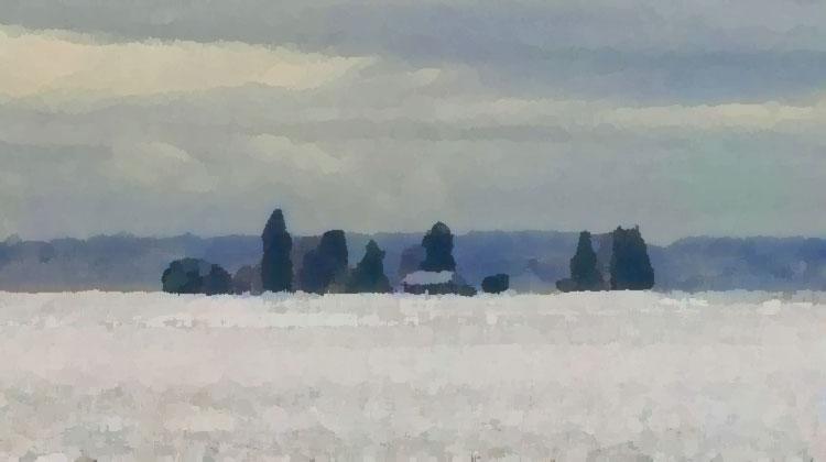 Skagit Snow / credit: D.Enck
