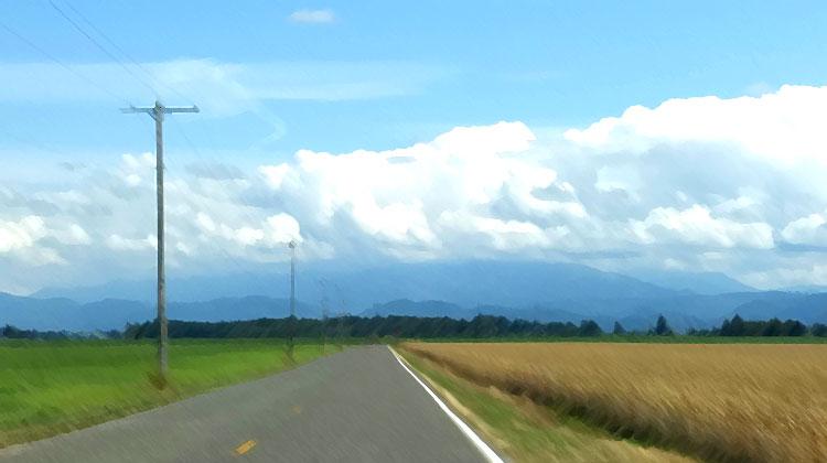 boundary road / credit: em