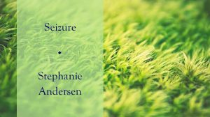 Seizure - essay by Stephanie Andersen