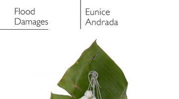 Eunice Andrada, Flood Damages