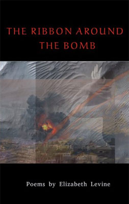 The Ribbon Around the Bomb - Elizabeth Levine