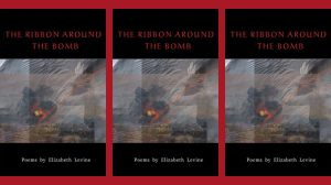The Ribbon Around the Bomb - Elizabeth Levine