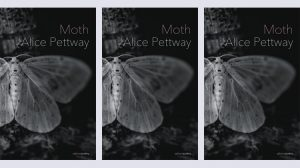 Moth by Alice Pettway - Salmon Poetry