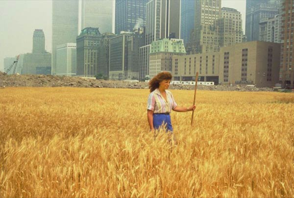 Wheatfield with Agnes Denes standing in the field Wheatfield - A Confrontation: Battery Park Landfill, Downtown Manhattan © 1982 Agnes Denes