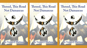Review of Threed by Tamara Madison poems