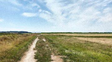 the skagit trail / credit: em